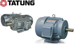 TATUNG ELECTRIC MOTOR